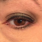 Urban-Decay-Moondust-Zodiac-swatch-wet-application-open-indoor-light