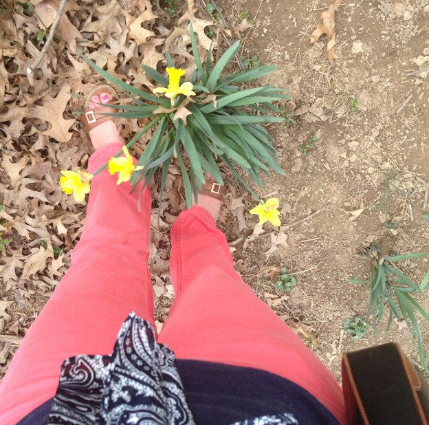 Coral Pants & Navy – spring has sprung